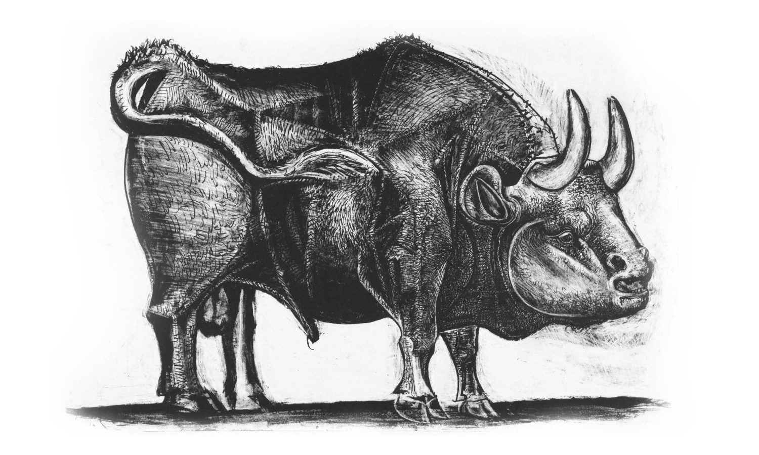 picasso-bull-product-design